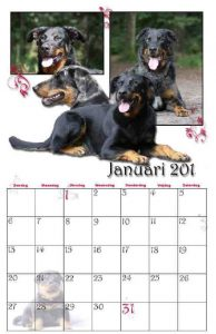 2011-kalender